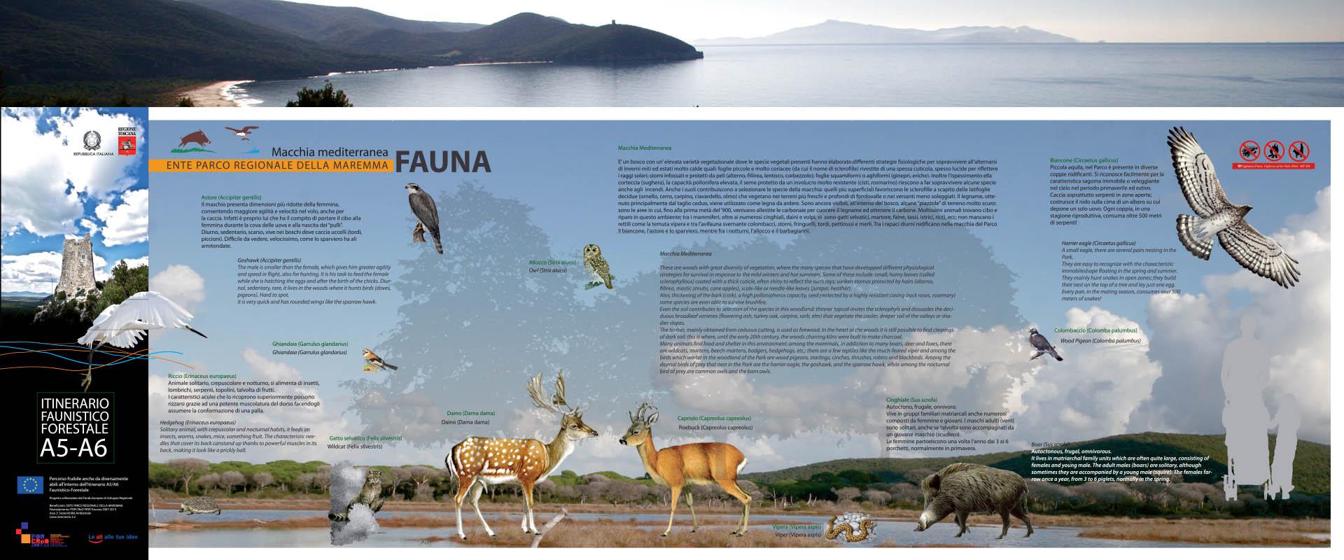 Obliqui_A5-A6_macchia mediterranea_fauna.indd