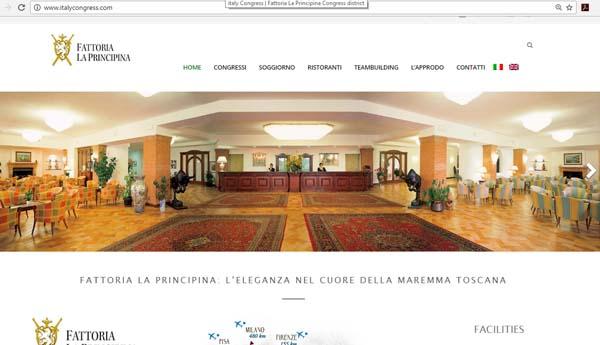aironic_ugo-capparelli_siti_web_fattoria_la_principinai
