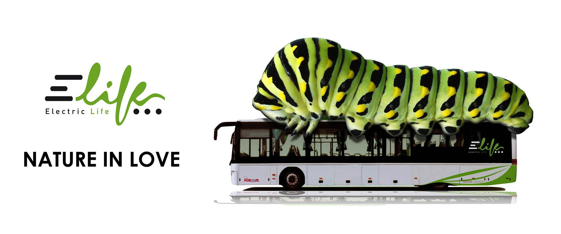 aironic_ugo_capparelli_design_comunicazione_grosseto_elife_autobus